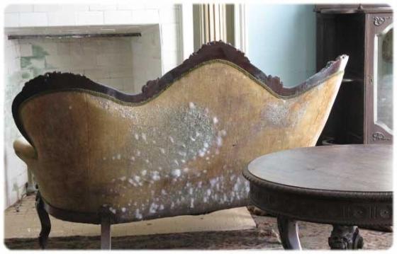 bảo quản đồ trang trí nội thất bằng gỗ